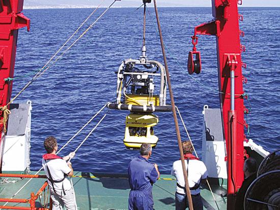 Boscos marins - expedició