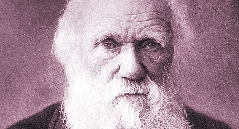 Darwin_1880