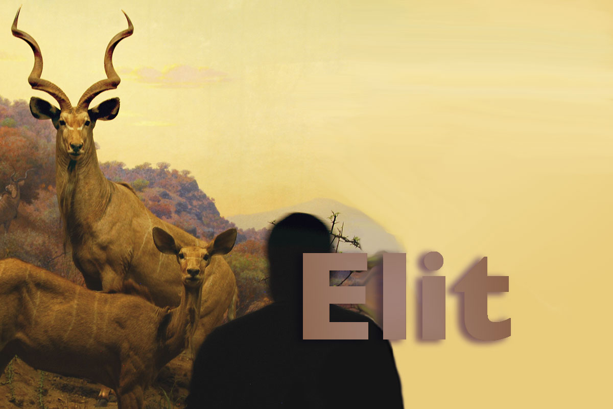 <? echo get_the_title();?></noscript><img class=