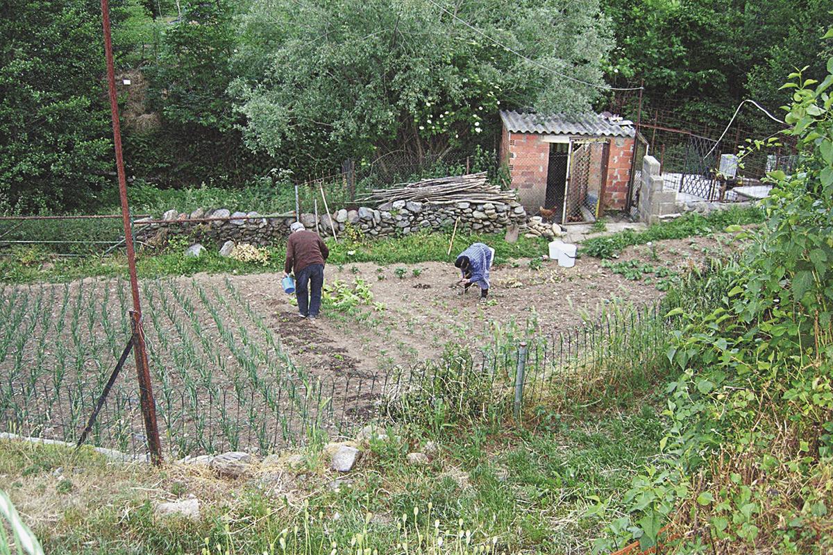 Els horts familiars del Pirineu català