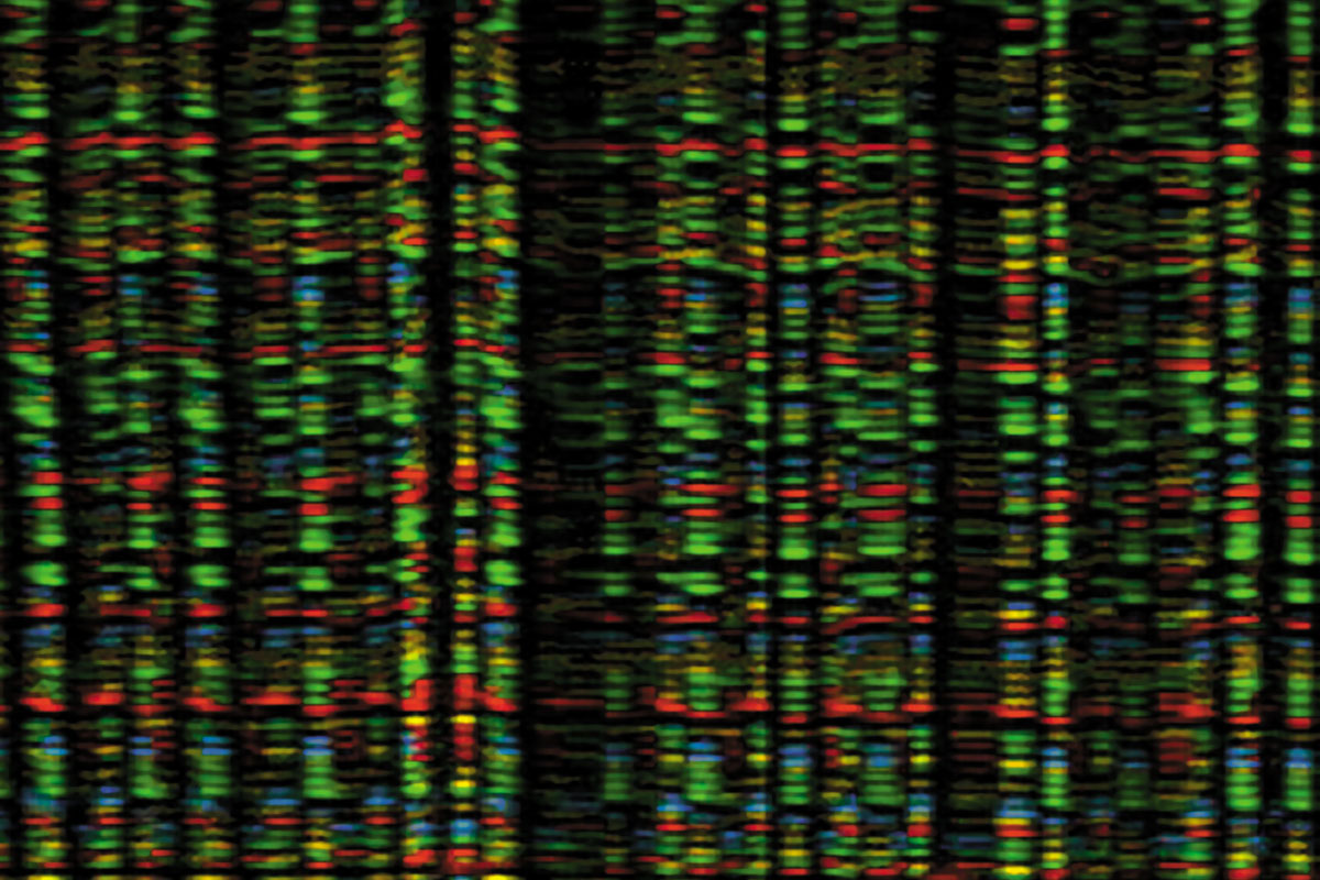 Què hi ha darrere del genoma?