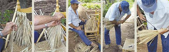 Los que fueron a hacer palma los segadores de palma de - Escobas de palma ...