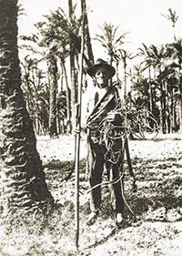 Palmerer d'Elx amb estris d'espart, cap a 1940. Arxiu Ripoll