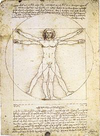 """El coneixement i les proporcions de la figura humana van ser detalladament considerats per Leonardo. """"La longitud dels braços estesos de l'home és igual a la seua altura""""."""