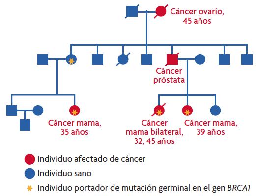 por que cancer es hereditario)
