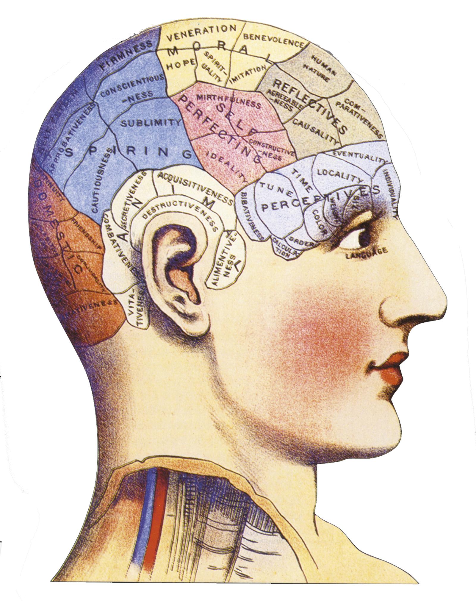 Historia De La Psicologia Carte Mentale