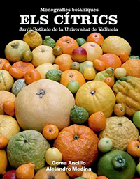 CITRICOS-lateral