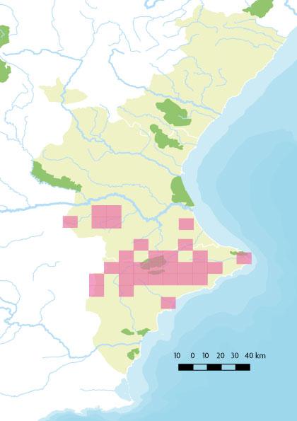 Mapa sàlvia
