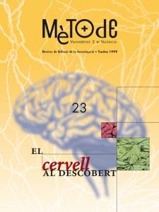 23-El cervell al descobert