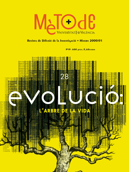 28-Evolución