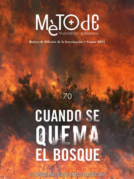 Cuando se quema el bosque