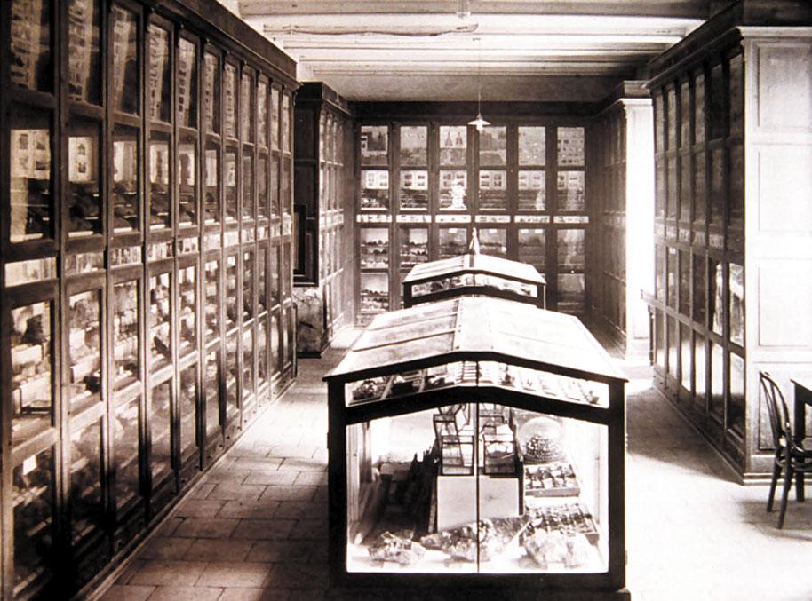 Museu d'Història Natural de l'Institut General i Tècnic de València