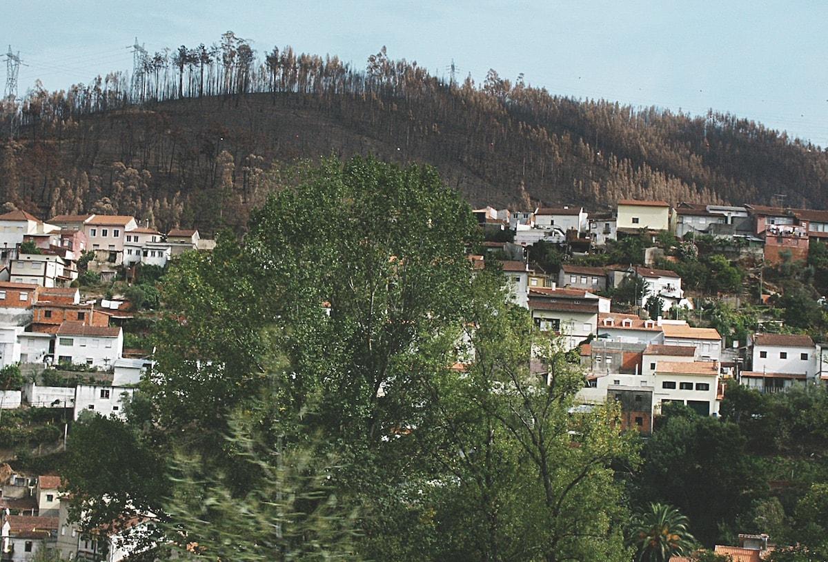 Foc prop de zona poblada