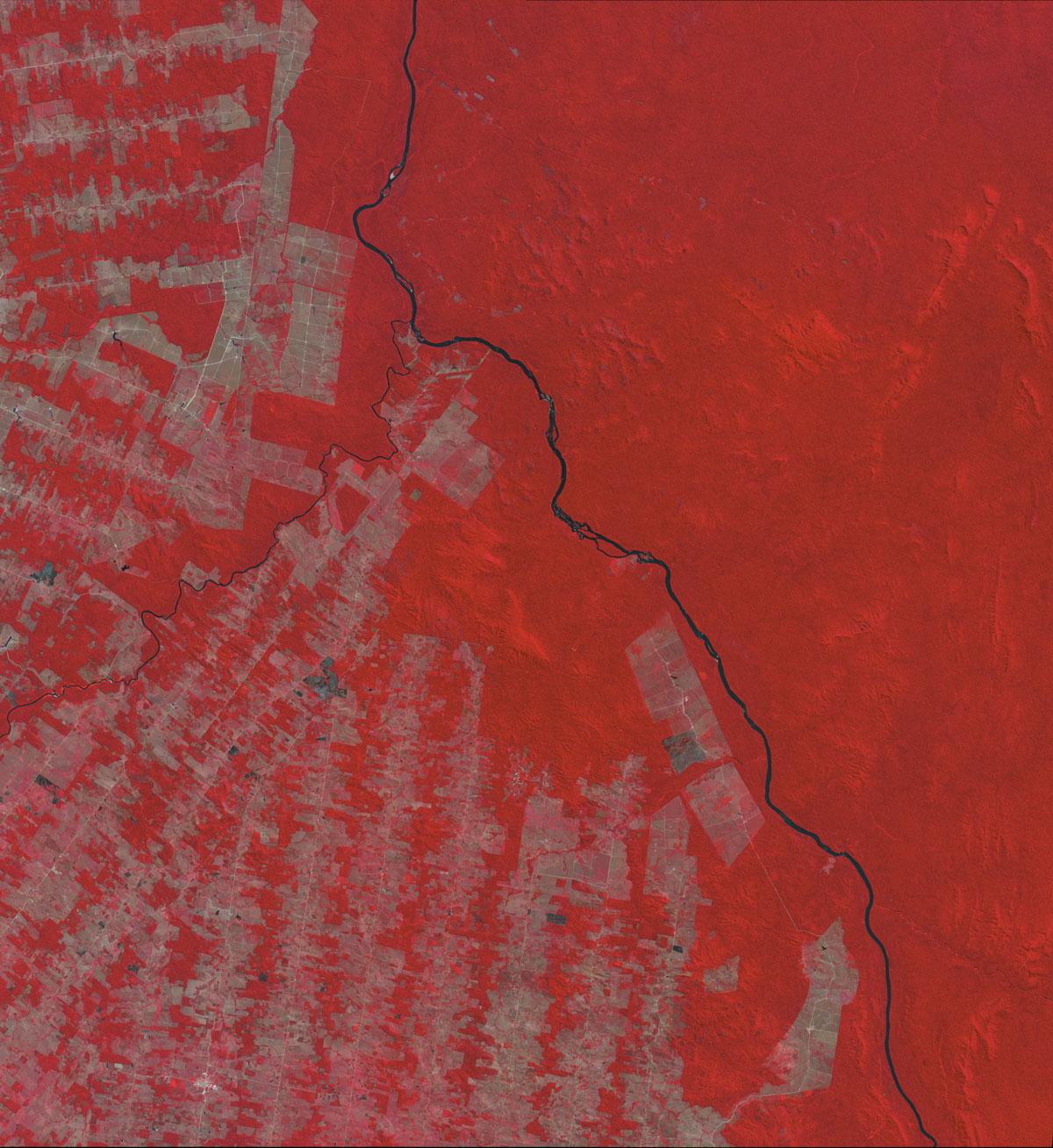 Deforestació Brasil
