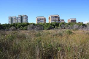 El Saler per al poble - Devesa del Saler urbanització