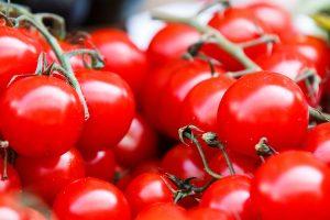 tomaquets