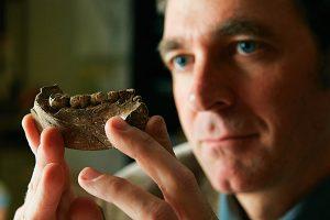 antropòleg Brian Villmoare mandíbula