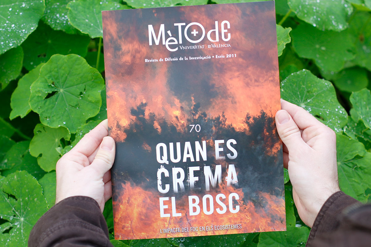 portada 70 - incendis forestals