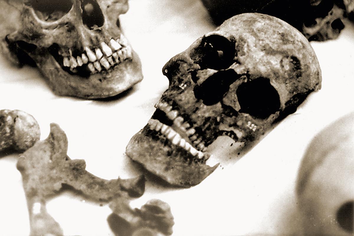 La genètica forense ha ajudat en casos històrics, com el de la família Romanov.