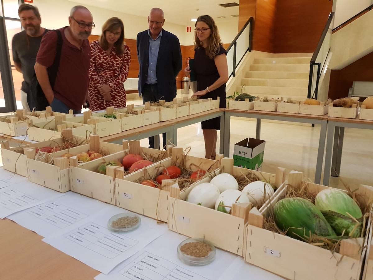 Catàleg valencià de varietats tradicionals d'interés agrari