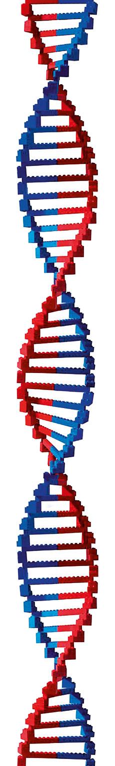 biologia sintètica lego