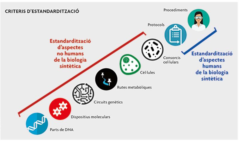 biologia sintètica criteris estandarització