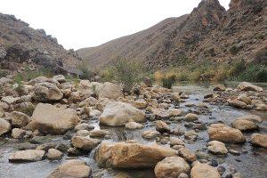 riu Muluia