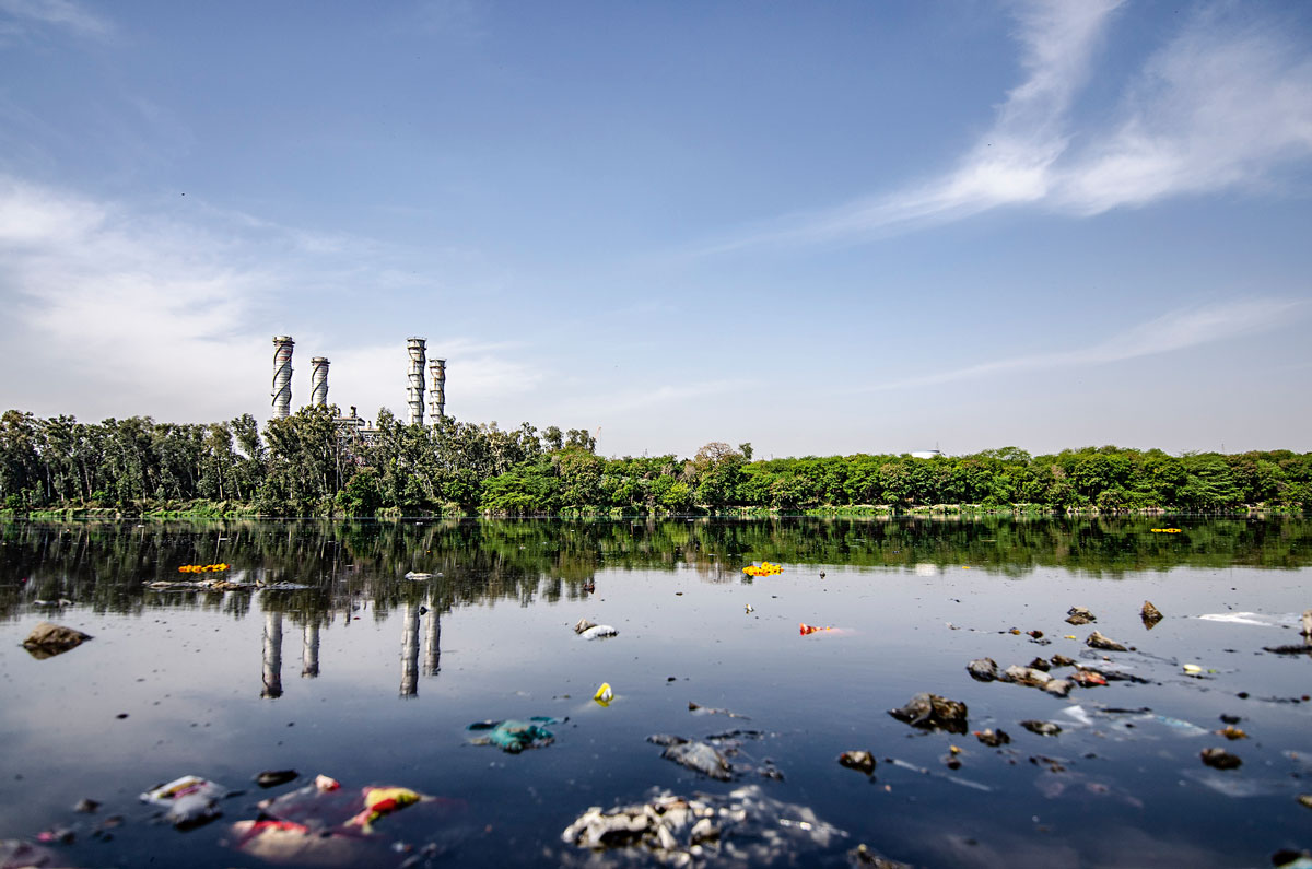 contaminació ambiental càncer