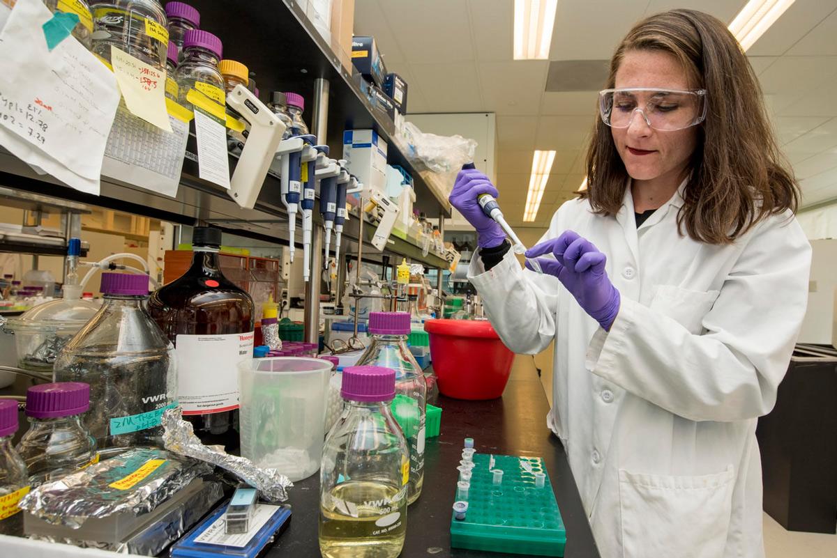Dia Internacional de la Xiqueta i la Dona en la ciència