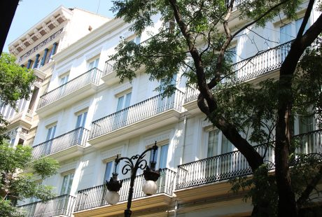 mèlia carrer valència natura des del balcó
