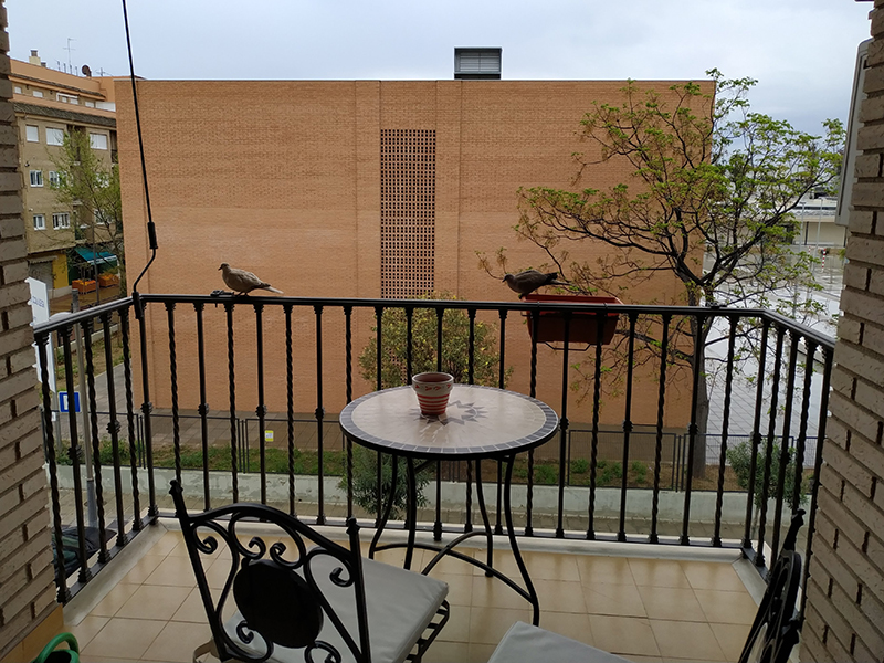 dove balcony