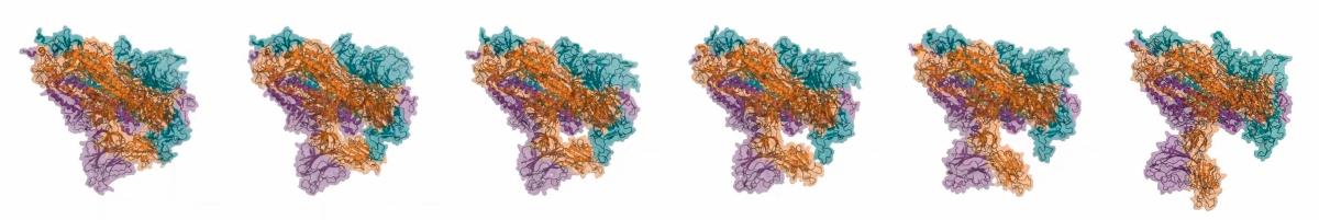 proteïna S del coronavirus SARS-CoV-2