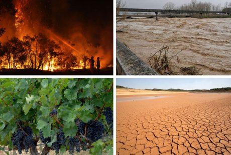 efectes crisi climàtica