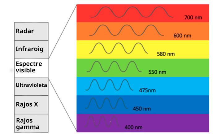 infografia 1 persones daltòniques