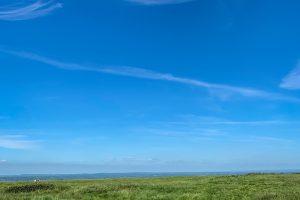 paisatge herba cel blau