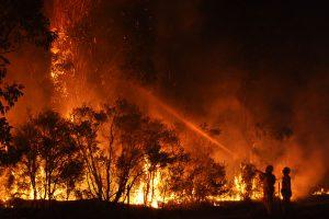 canvi climàtic incendis forestals