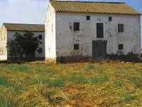 llegat agrícola