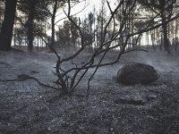 El sòl es pot veure afectat