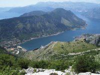 plantes en la península dels Balcans