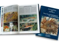 Enciclopèdia de Menorca