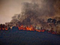 Incendi a Andilla (Serrans)
